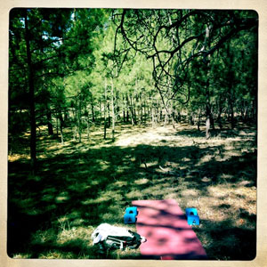 yoga mat in the woods