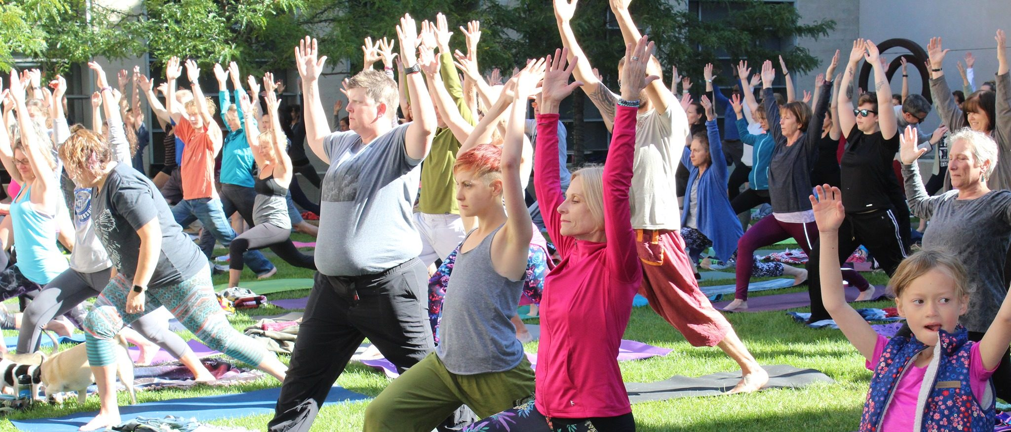 people in warrior yoga pose